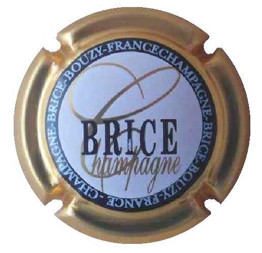 Brice l16