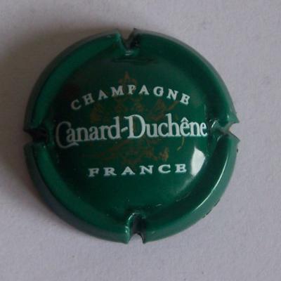 Canard duchene vert f