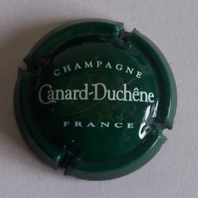 Canard duchene vert