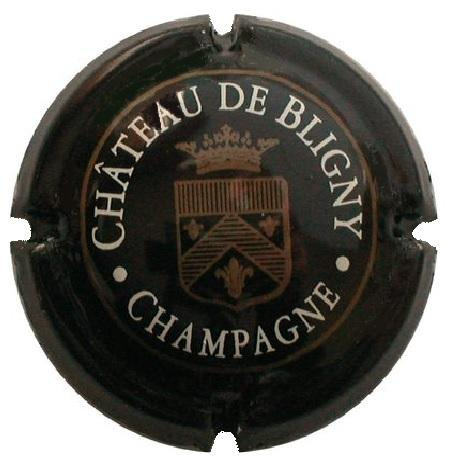 Chateau de bligny l03