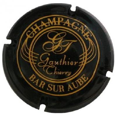Gauthier thierry l01