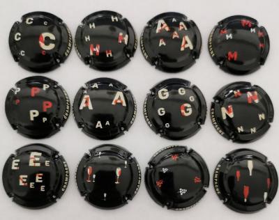 Generique puzzle 12 caps nr