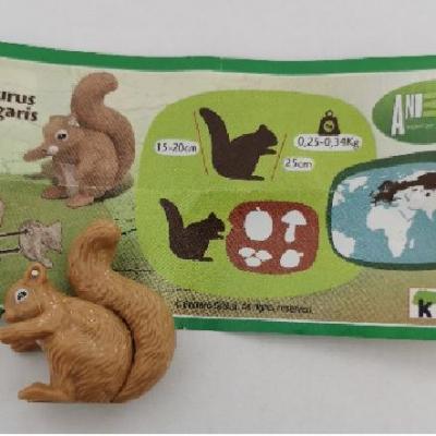 Kinder fs287 ecureuil