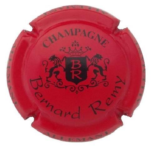 Remy bernard l15